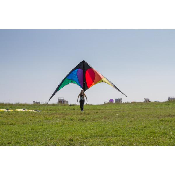Parrot 3D