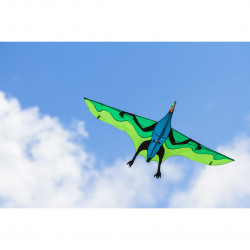 Flying Dinosaur 3D