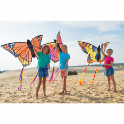 Butterfly Kite Swallowtail L