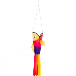 Windsock Little Rainbow Fish