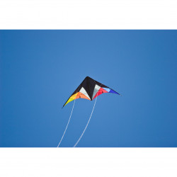 Quickstep II Black Rainbow R2F